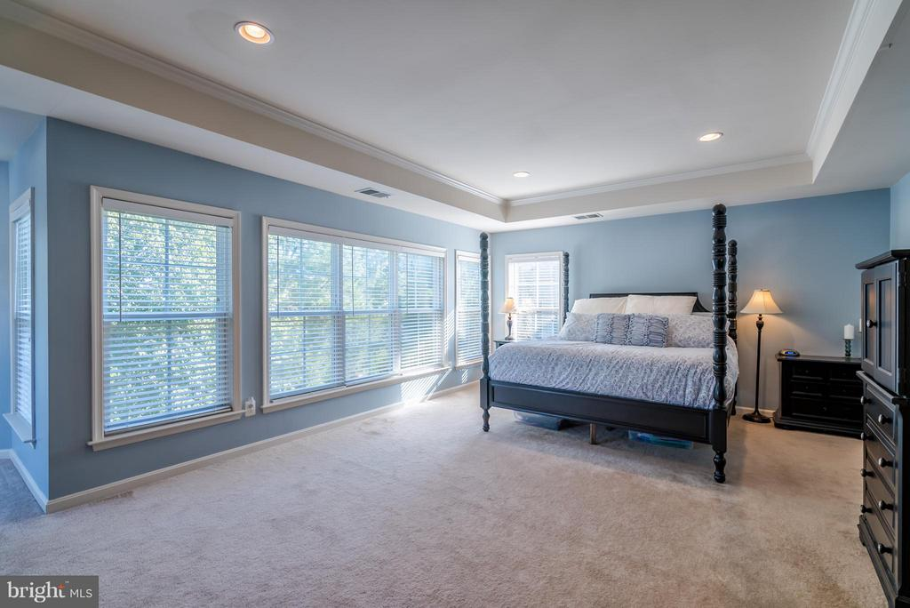 Huge Master Bedroom - 42730 EXPLORER DR, ASHBURN