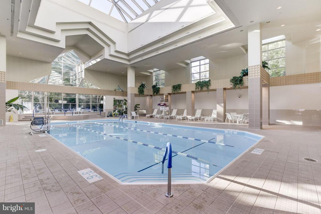 Community indoor pool - 5600 WISCONSIN AVE #803, CHEVY CHASE
