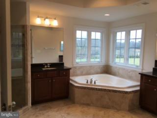 Bath (Master) - 36496 WHISPERING SPRINGS CT, PURCELLVILLE