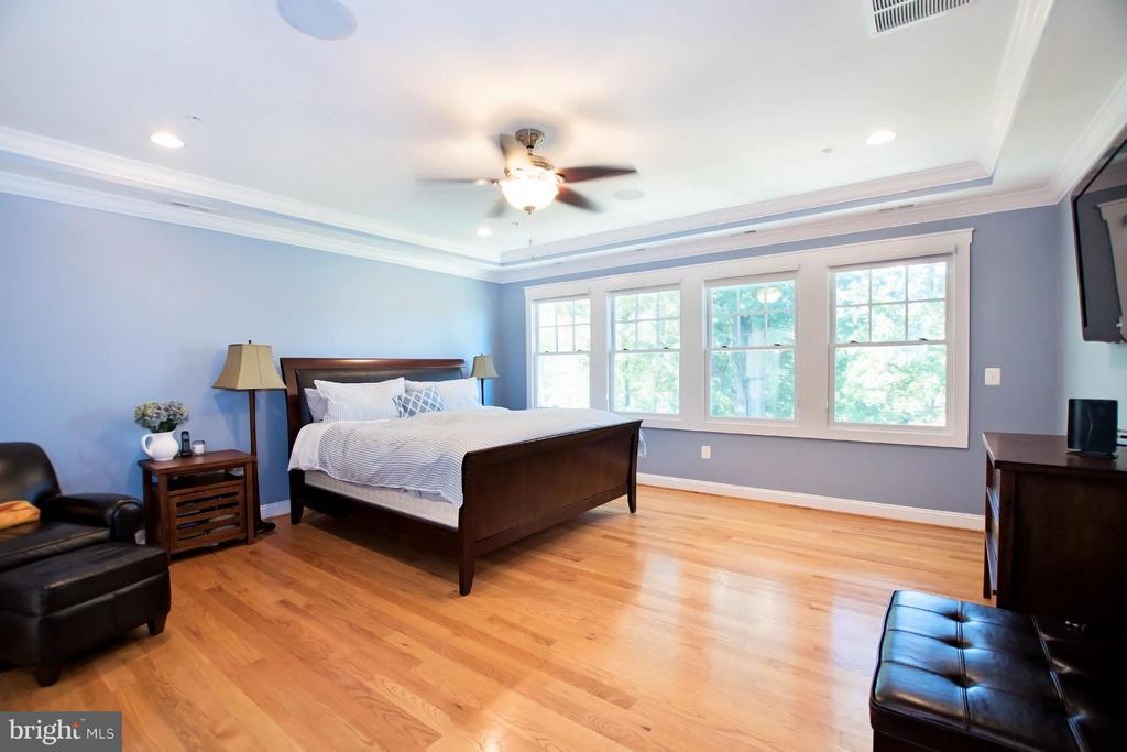Large BR w/ audio, blackout shades, tray ceiling - 2332 KENMORE ST N, ARLINGTON