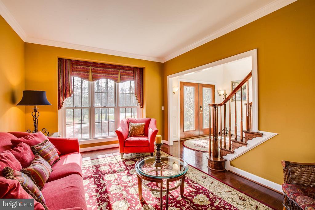 Living Room - 259 SPYGLASS LN, STAFFORD