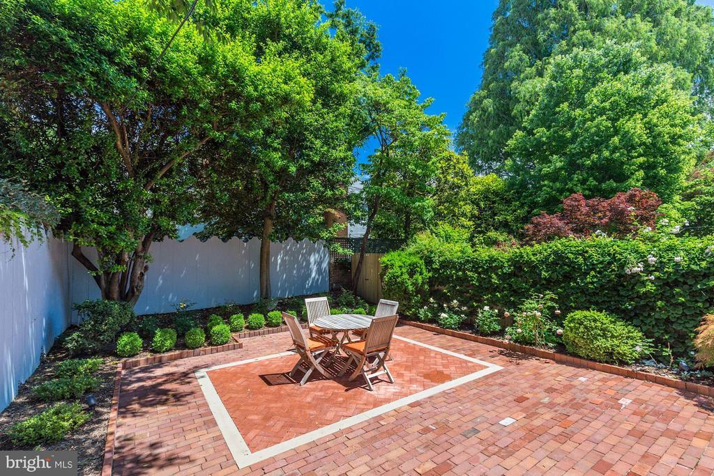 Serene setting of well-manicured garden - 3029 O ST NW, WASHINGTON