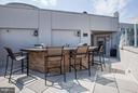 Rooftop Grilling Area & Bar - 1021 GARFIELD ST #348, ARLINGTON