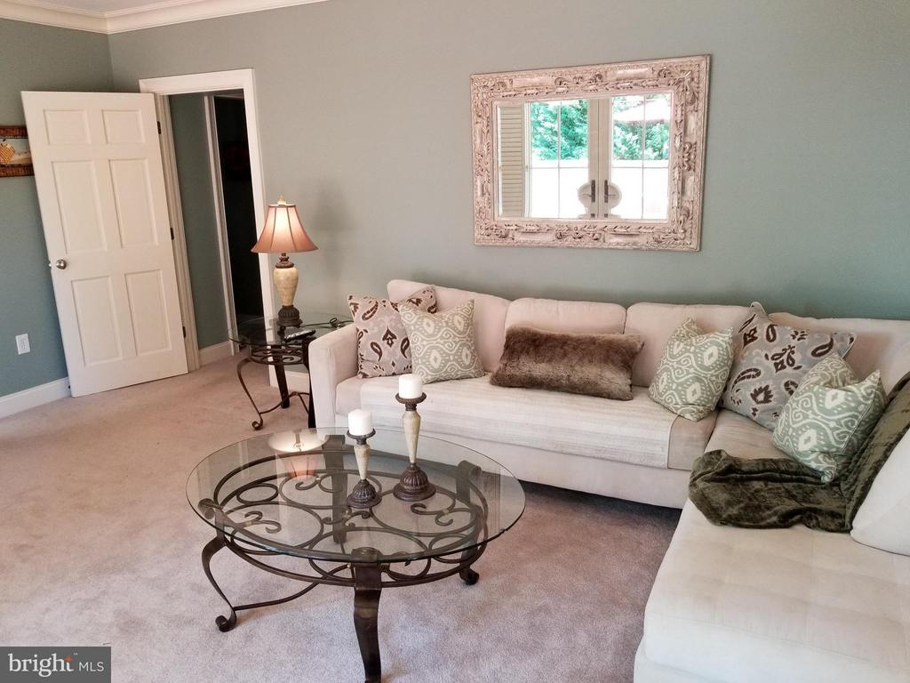 Lower Level Lounge! - 6012 GROVE DR, ALEXANDRIA