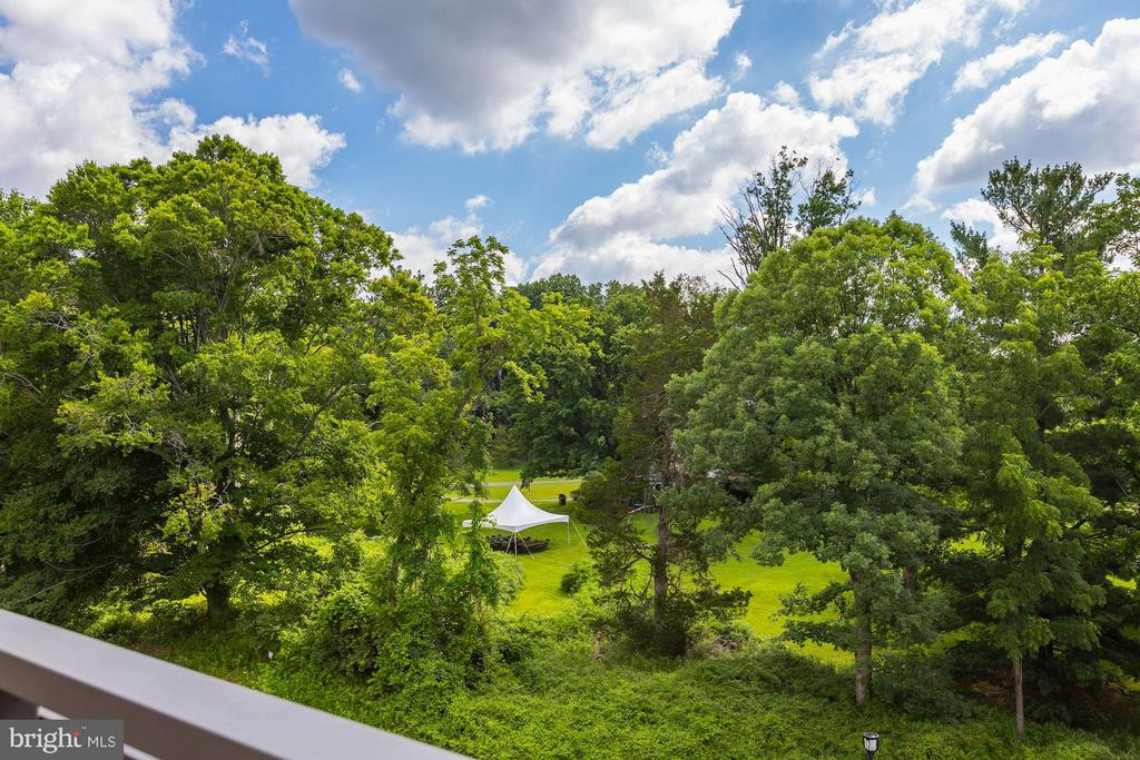 View from terrace - 171 WINSOME CIR, BETHESDA