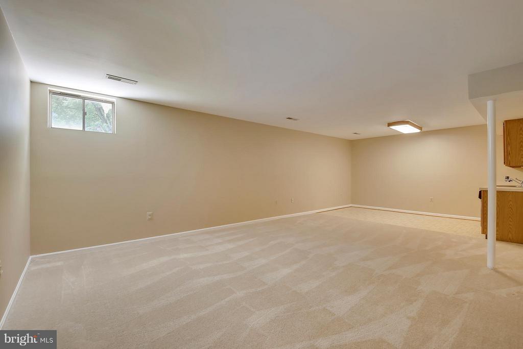 Lower Level 2-Recreational Room - 7300 DEER LAKE LN, ROCKVILLE