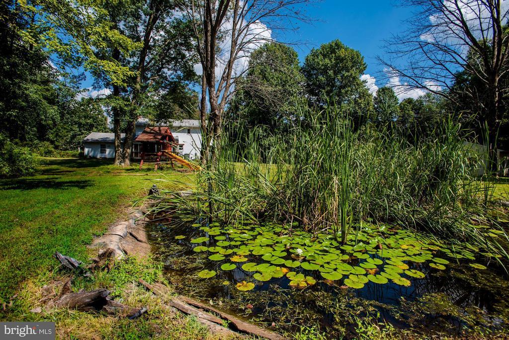 Coy pond. - 15781 PALMER LN, HAYMARKET