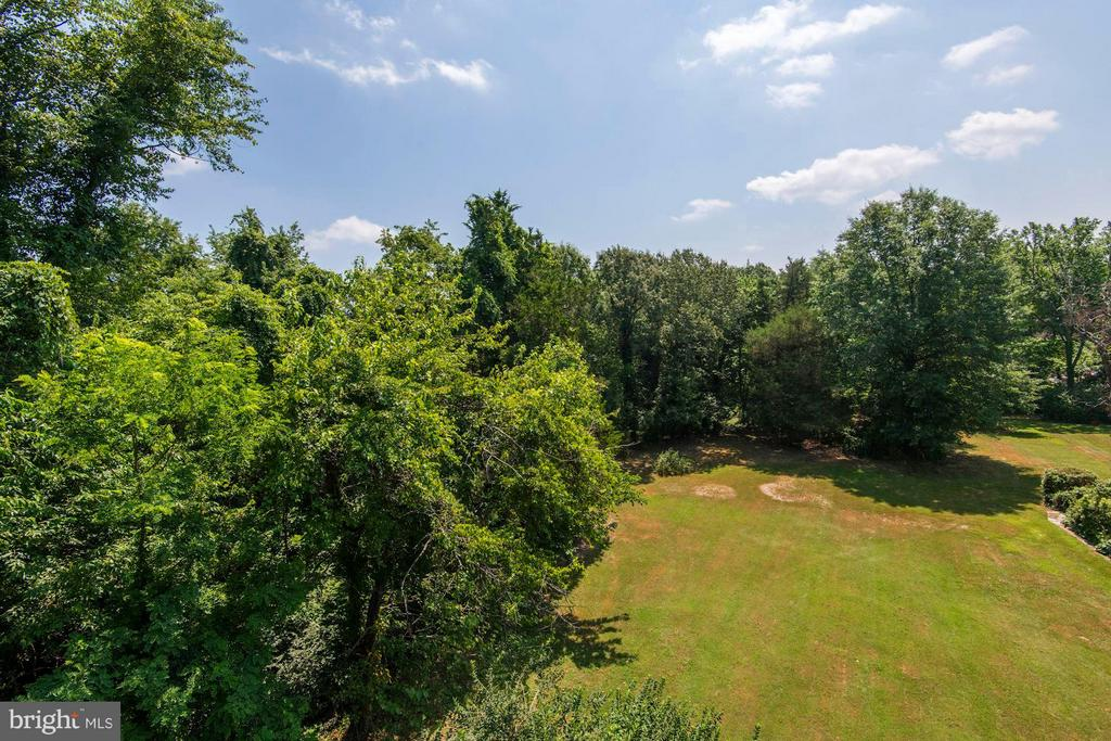Lot 7 is mostly wooded - 5524 SUMMIT ST, CENTREVILLE