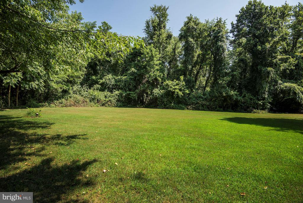 Open space on Lot 5 - 5524 SUMMIT ST, CENTREVILLE