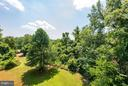 Feels like parkland, surrounded by mature trees - 5524 SUMMIT ST, CENTREVILLE