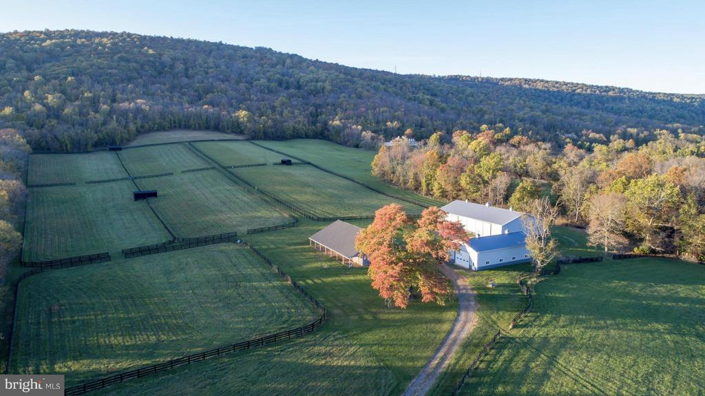 Blue Ridge Mountains above Paddocks - 21167 TRAPPE RD, UPPERVILLE