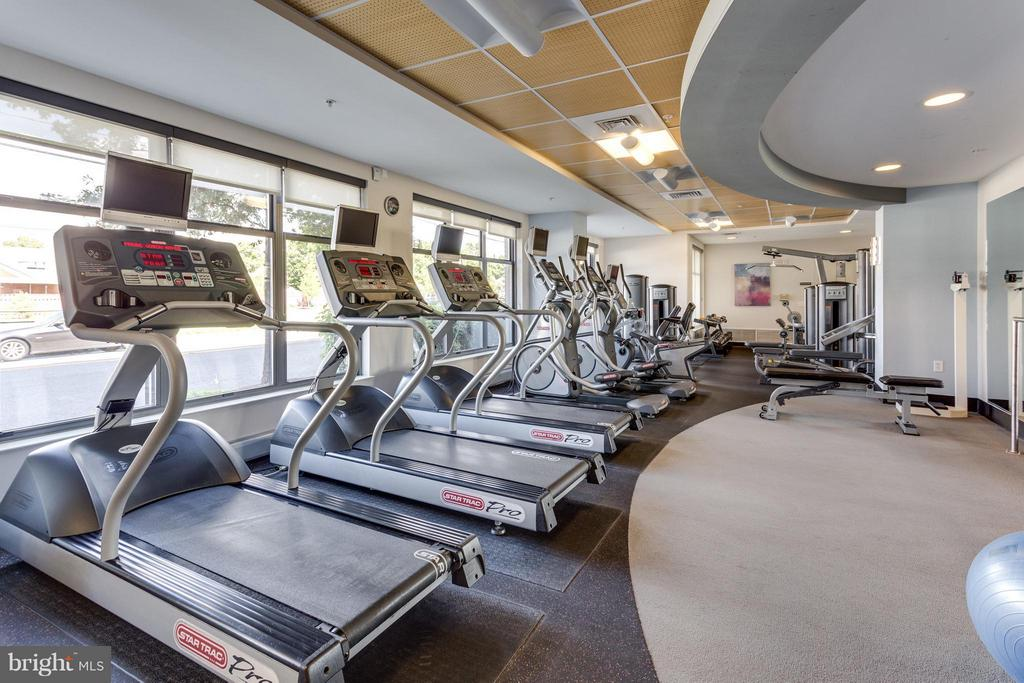 Large Gym at The Henry - 525 FAYETTE ST #507, ALEXANDRIA