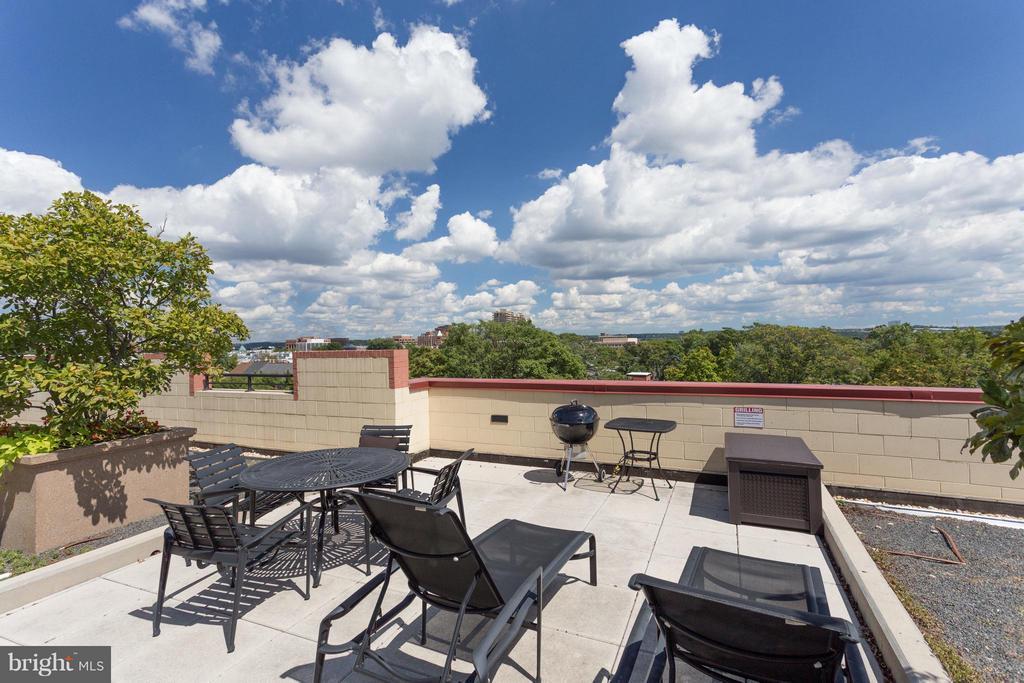 Rooftop Deck - 525 FAYETTE ST #507, ALEXANDRIA