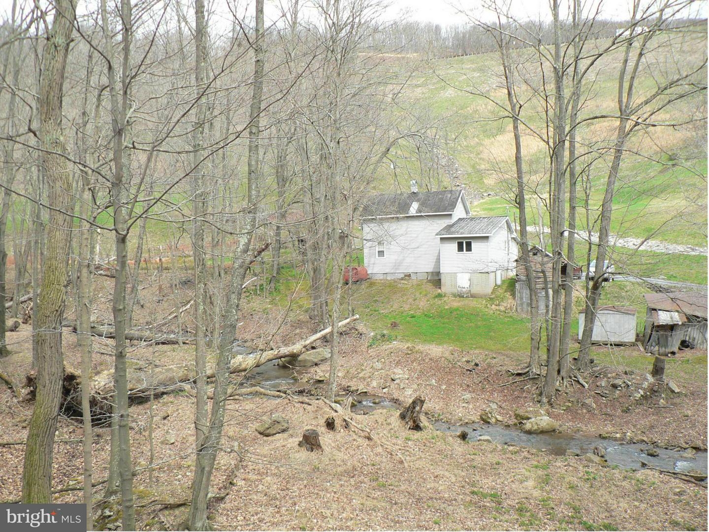 Single Family for Sale at 1045 Jessie Ours Rd Maysville, West Virginia 26833 United States