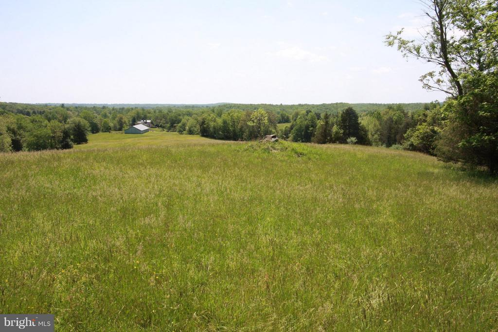 Cattle, agriculture, vineyard potential - 399 CASTLETON FORD RD, CASTLETON