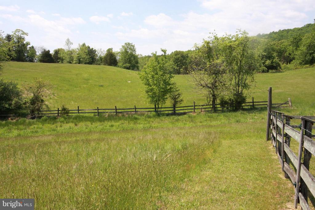 Rolling hills and several side pastures - 399 CASTLETON FORD RD, CASTLETON