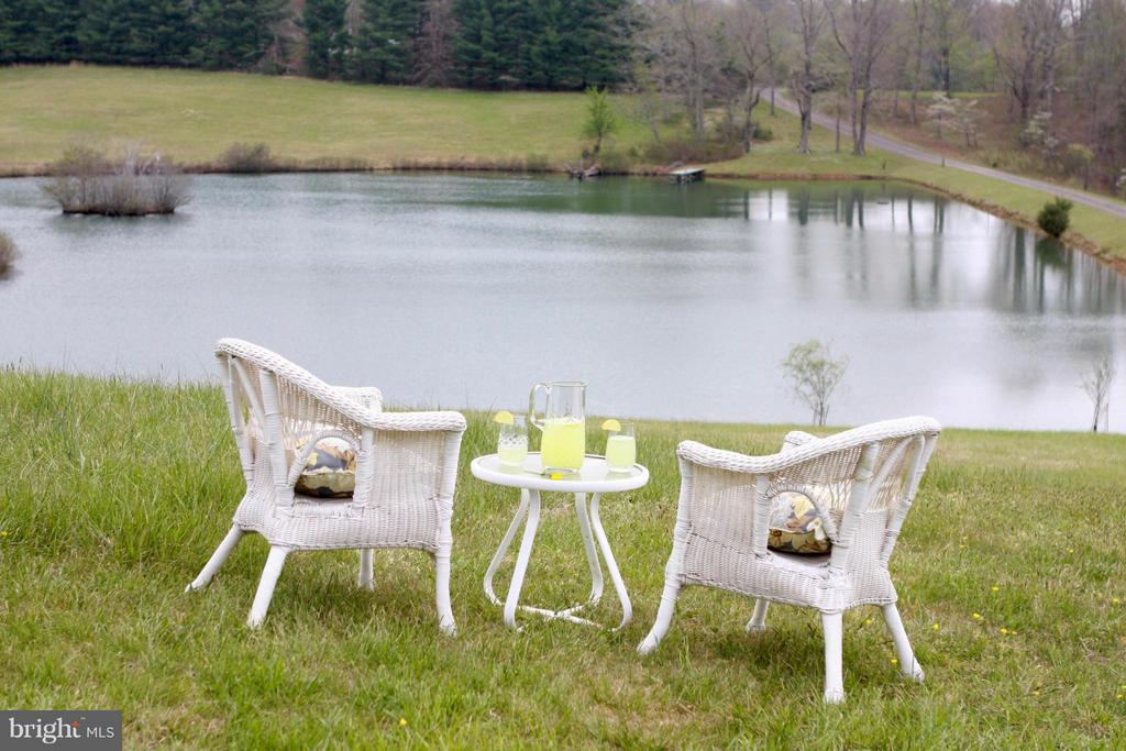 Enjoy a glass of lemonade overlooking the pond - 399 CASTLETON FORD RD, CASTLETON