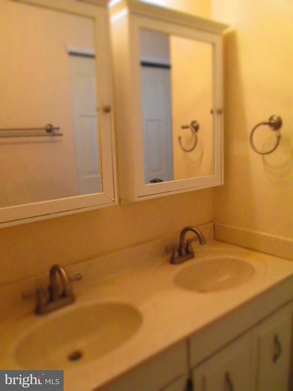 Bath (Master) - 9211 HUMMINGBIRD TER, GAITHERSBURG