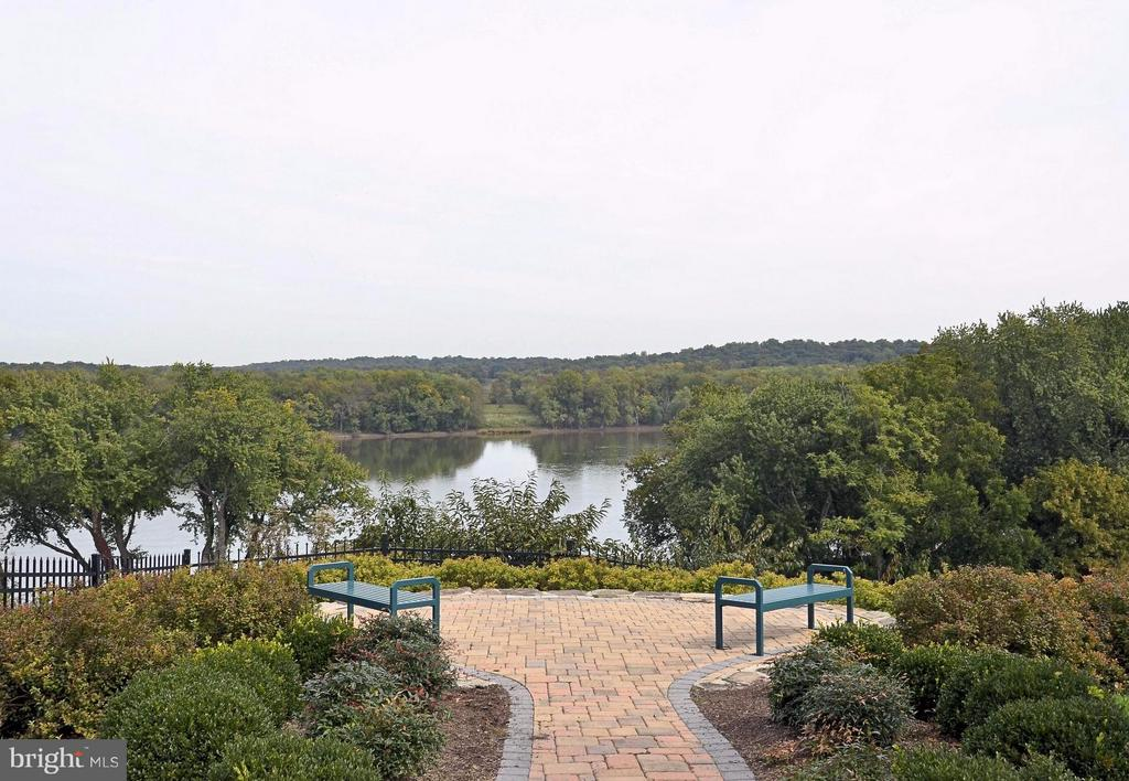 Relaxing view of the Potomac River from Clubhouse - 18503 PELICANS NEST WAY, LEESBURG