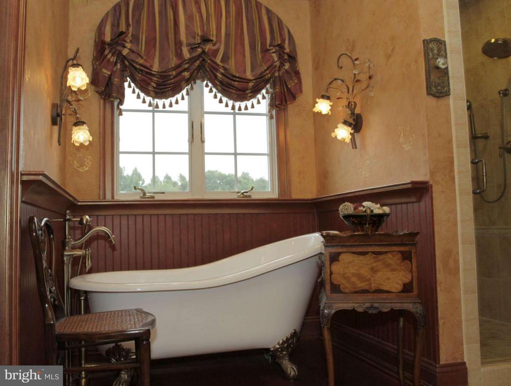 Bath (Master) - 550 MOUNT OLIVE RD, FREDERICKSBURG