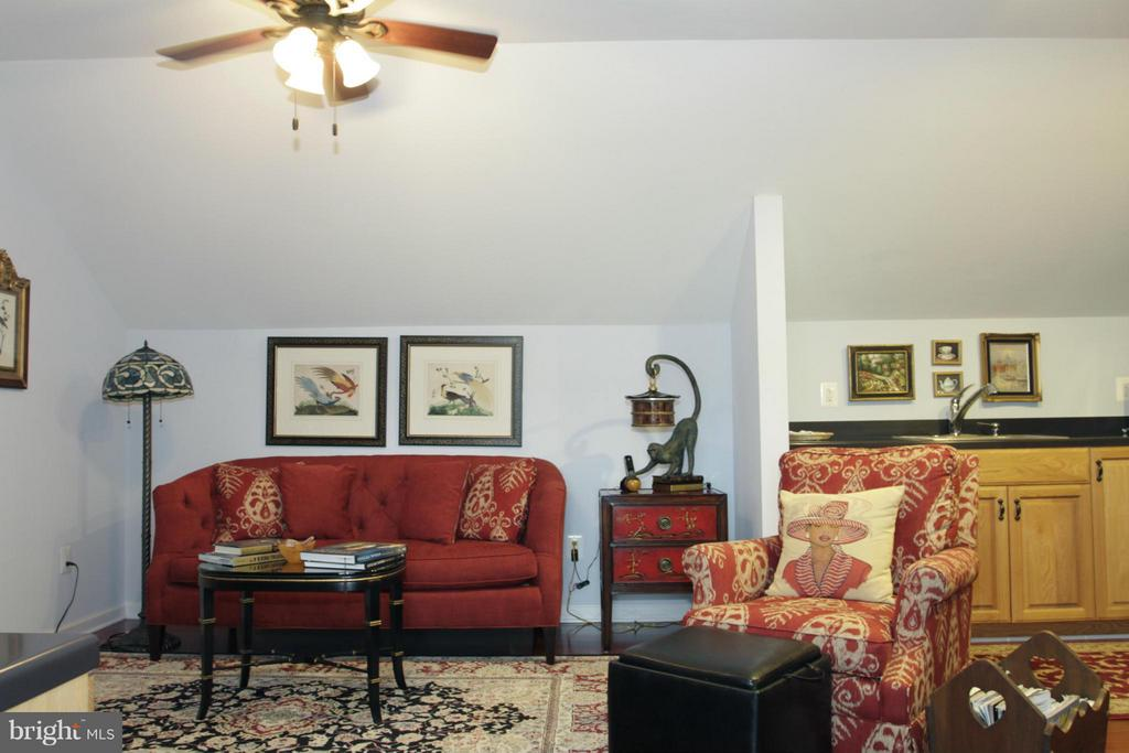 Apartment Living Room - 550 MOUNT OLIVE RD, FREDERICKSBURG