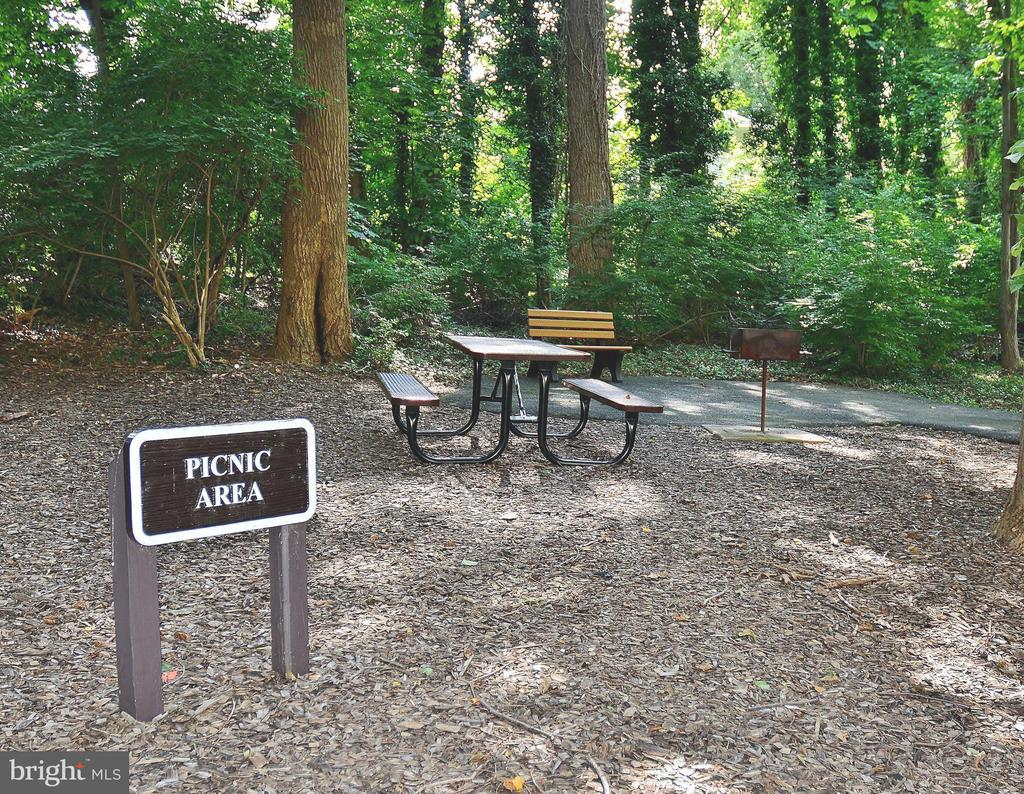 Picnic Area w Gas Grills - 5225 POOKS HILL RD #1615S, BETHESDA