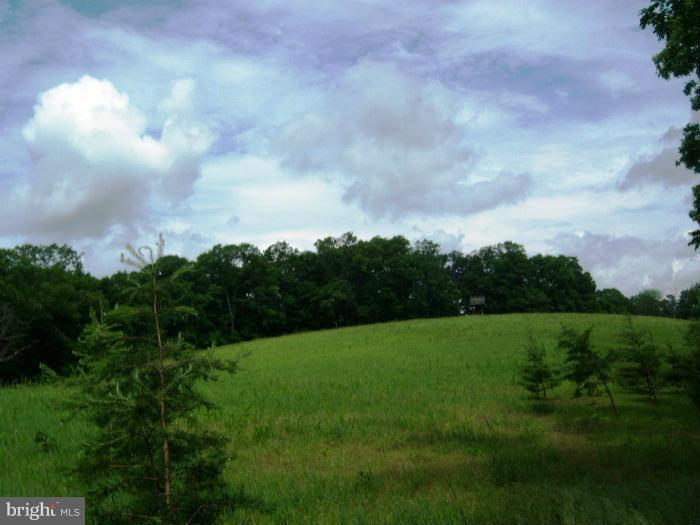 Land for Sale at 3400 Rockford Road Great Cacapon, West Virginia 25422 United States