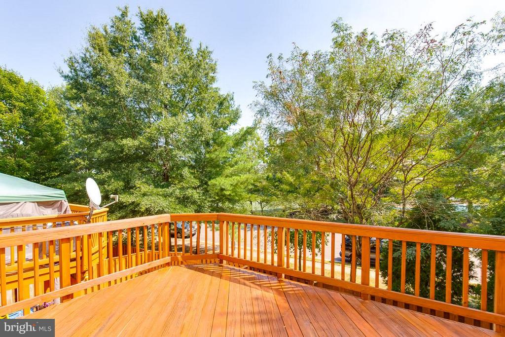 Entertain with deck off kitchen - 14817 EDMAN RD, CENTREVILLE
