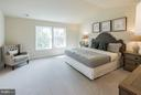 Generous master with space for your king size bed - 2020 CONLEY CT, SILVER SPRING
