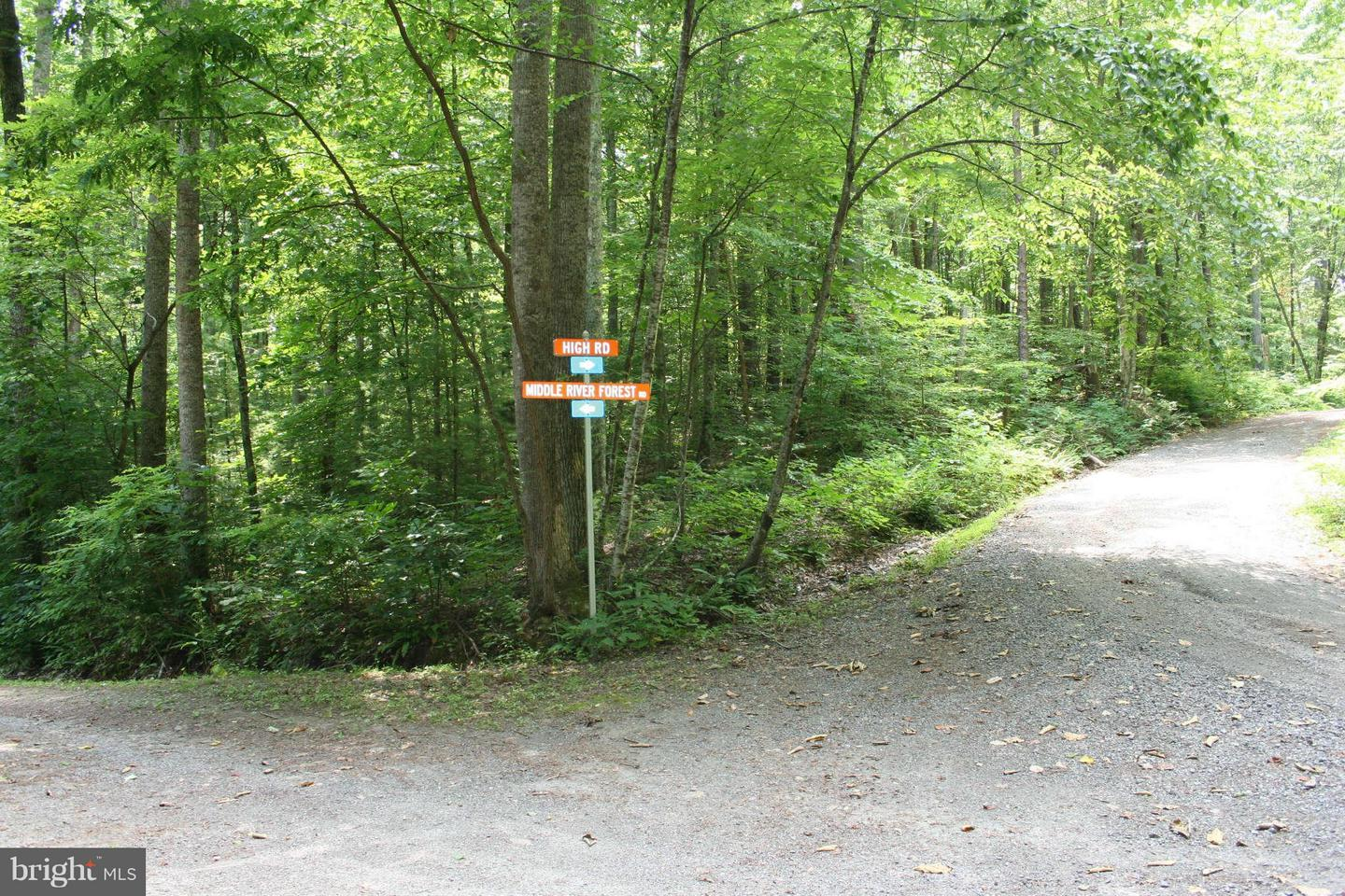 Land for Sale at High Rd Madison, Virginia 22727 United States