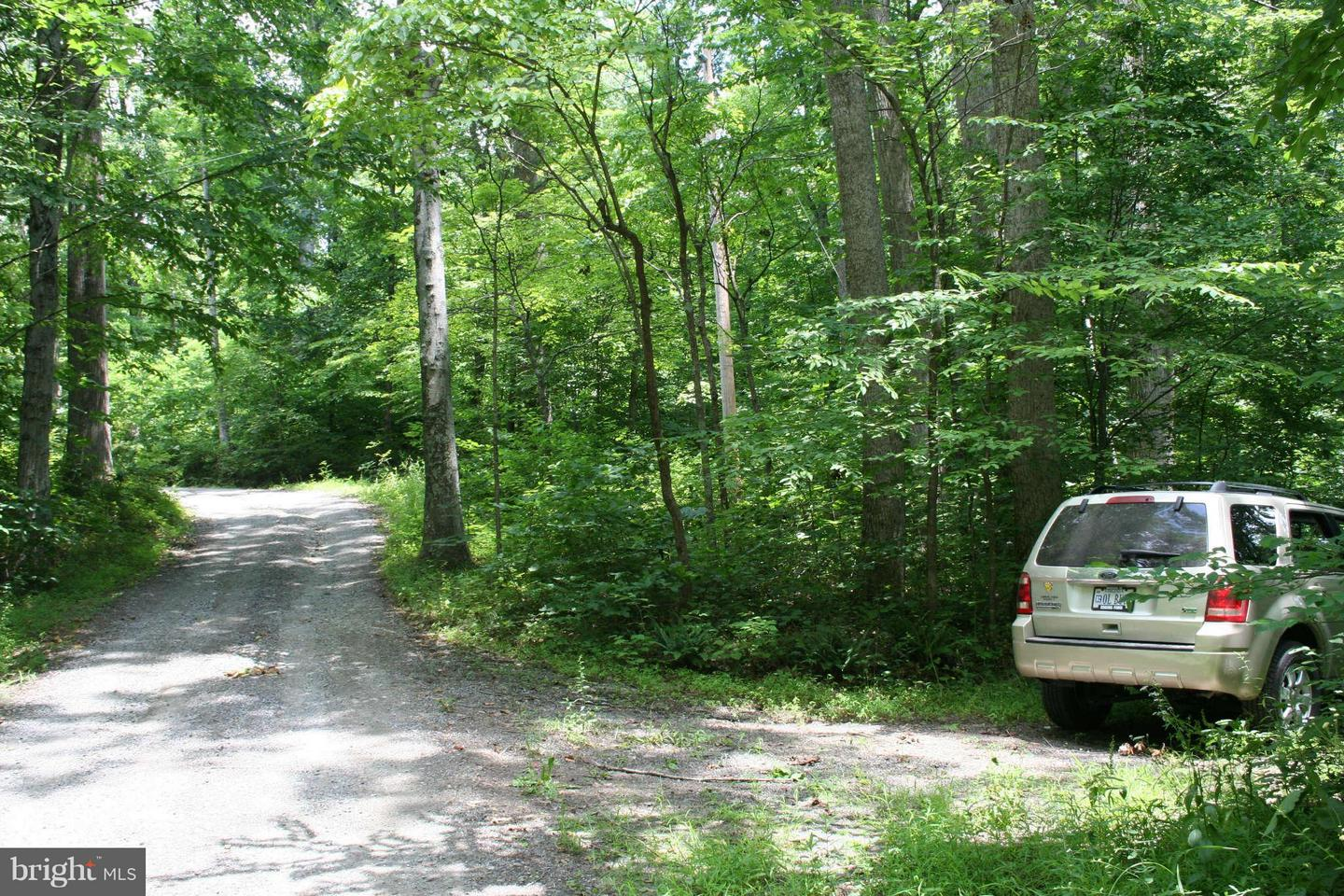 Additional photo for property listing at High Rd  Madison, Virginia 22727 United States