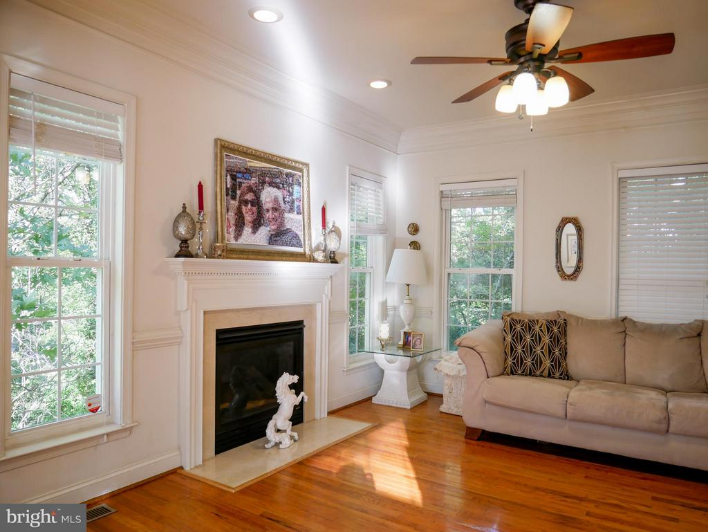 Living Room - 10409 COLESVILLE RD, SILVER SPRING