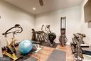 Lower Level Exercise Room - 10819 SYMPHONY PARK DR, NORTH BETHESDA