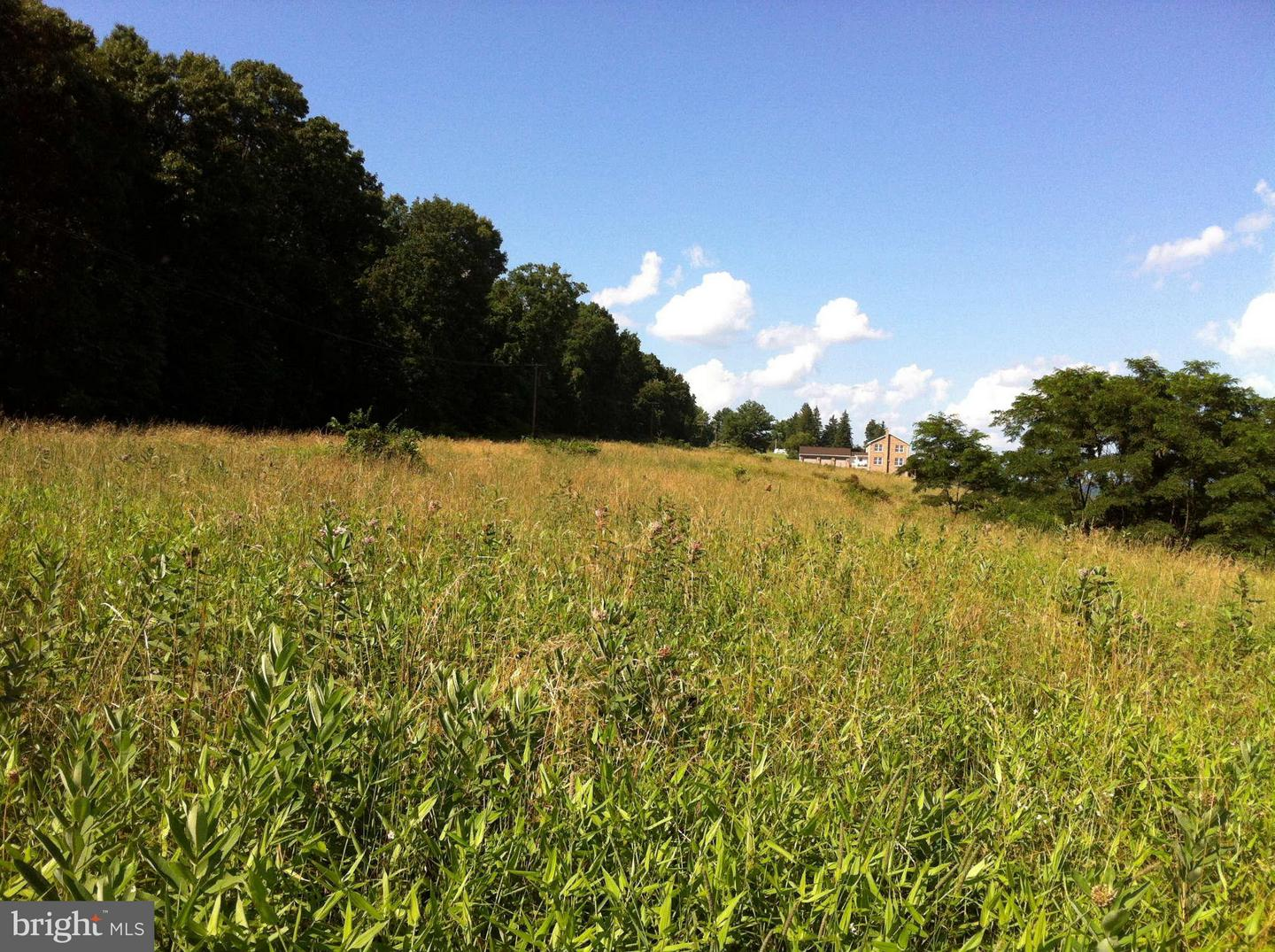 Land for Sale at Martins Mountain Ln Oldtown, Maryland 21555 United States