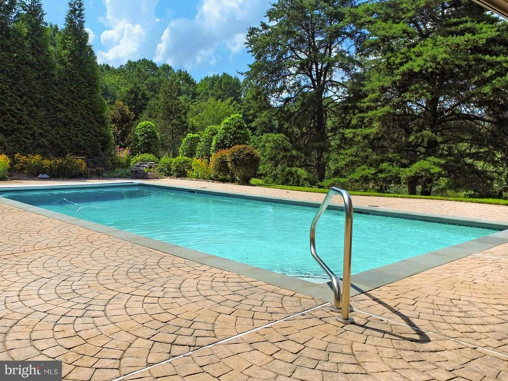 Beautiful landscaping surround private pool - 13104 LAUREL GLEN RD, CLIFTON