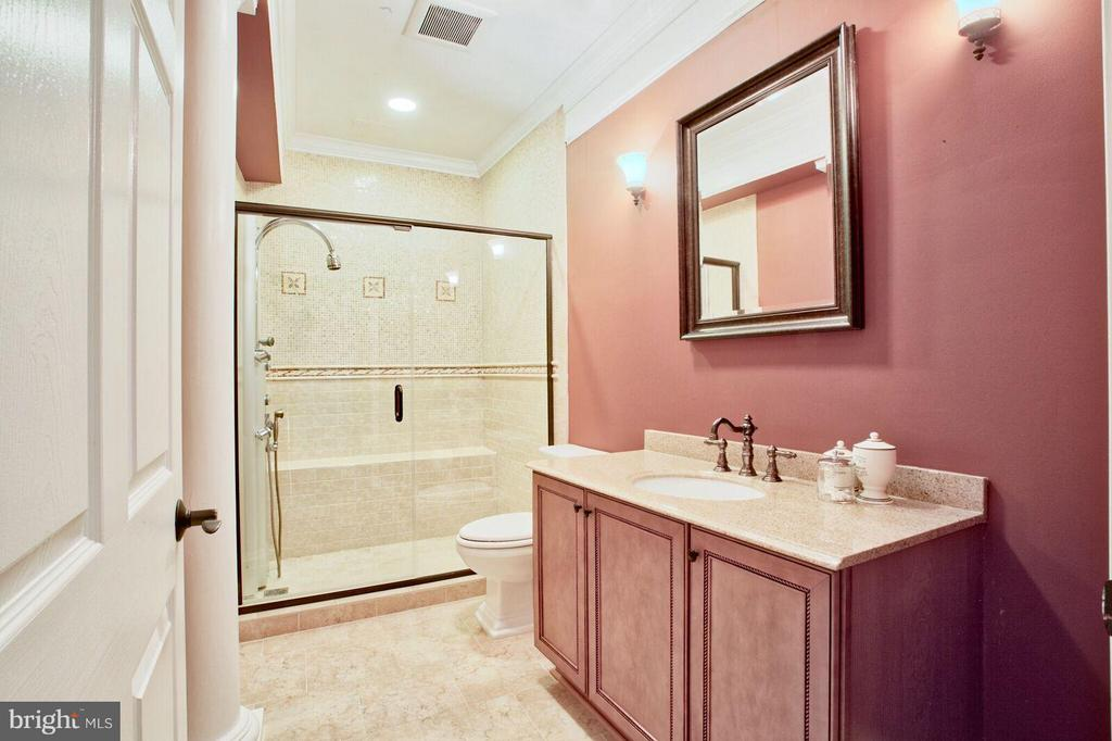 Vertical Spa Bath - 27563 EQUINE CT, CHANTILLY