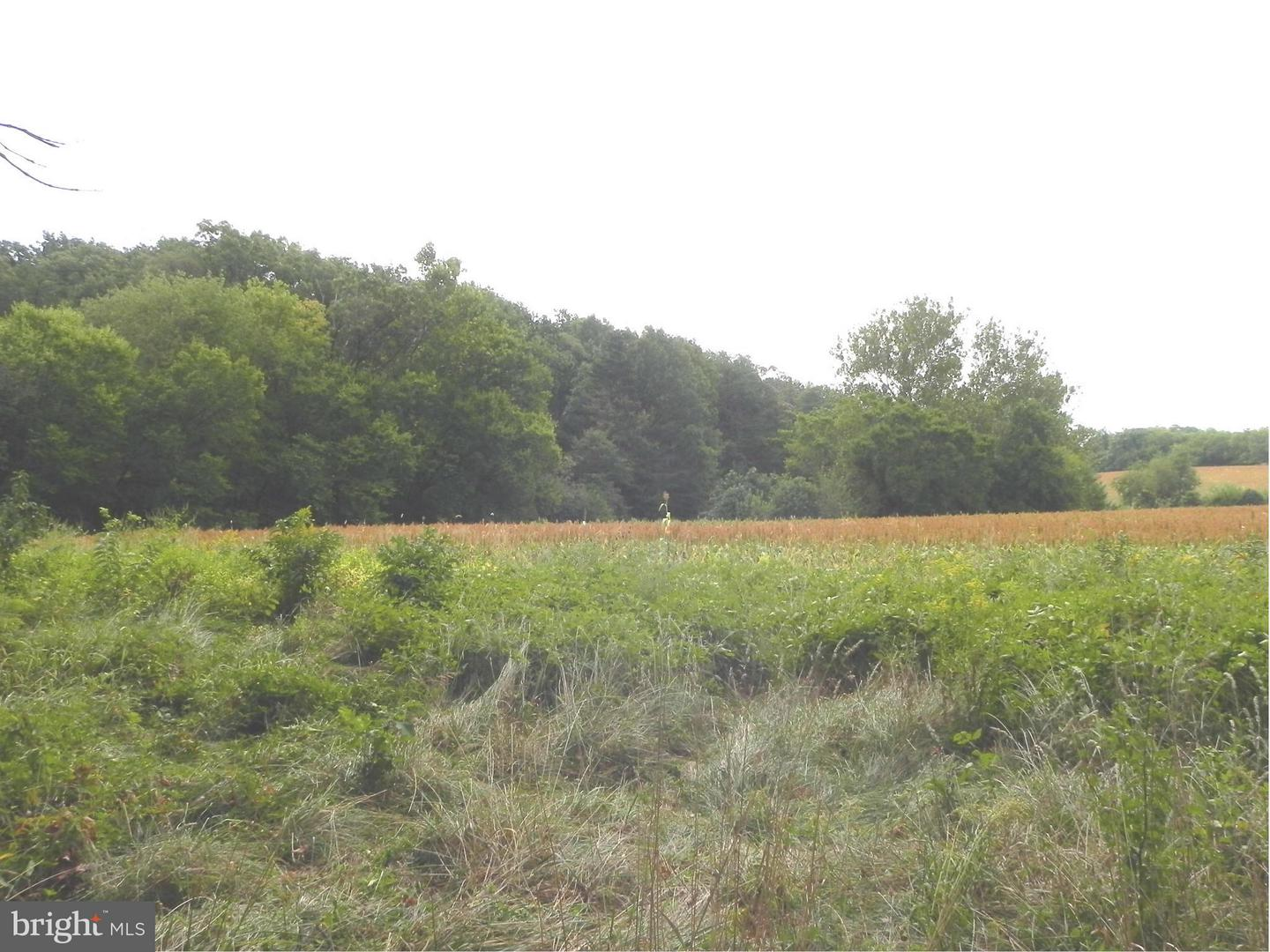 Land for Sale at Boyds, Maryland 20841 United States