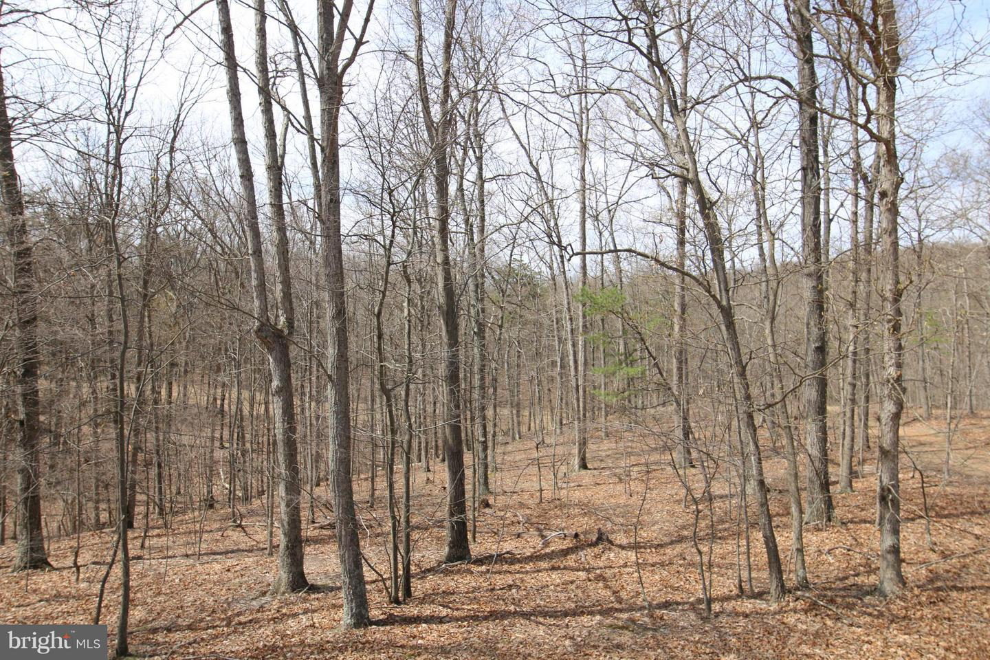 Land for Sale at 30 Apprentice Way Gerrardstown, West Virginia 25420 United States