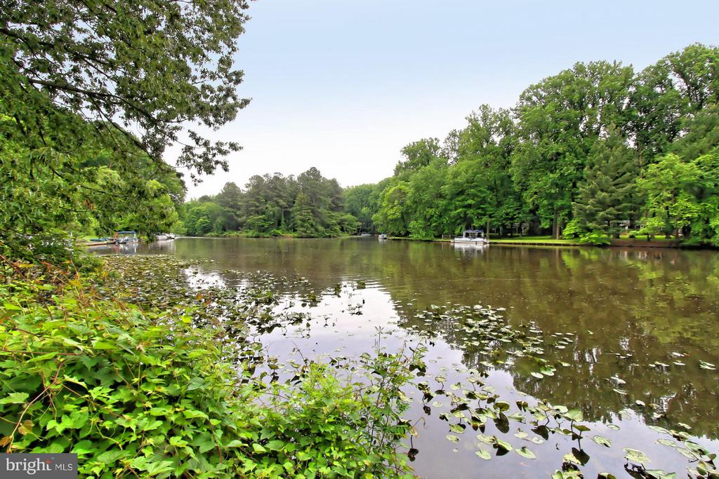 Beautiful Lake Frontage! - 6519 DEARBORN DR, FALLS CHURCH