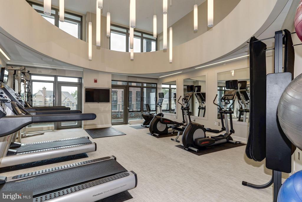 Fitness Center - 7171 WOODMONT AVE #506, BETHESDA