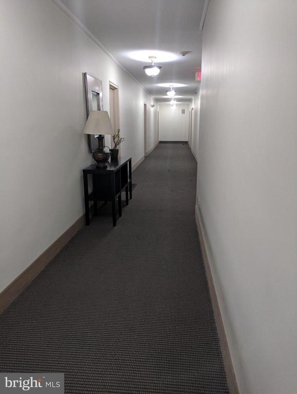 Interior (General) - 101 CAROLINA AVE SE #308, WASHINGTON