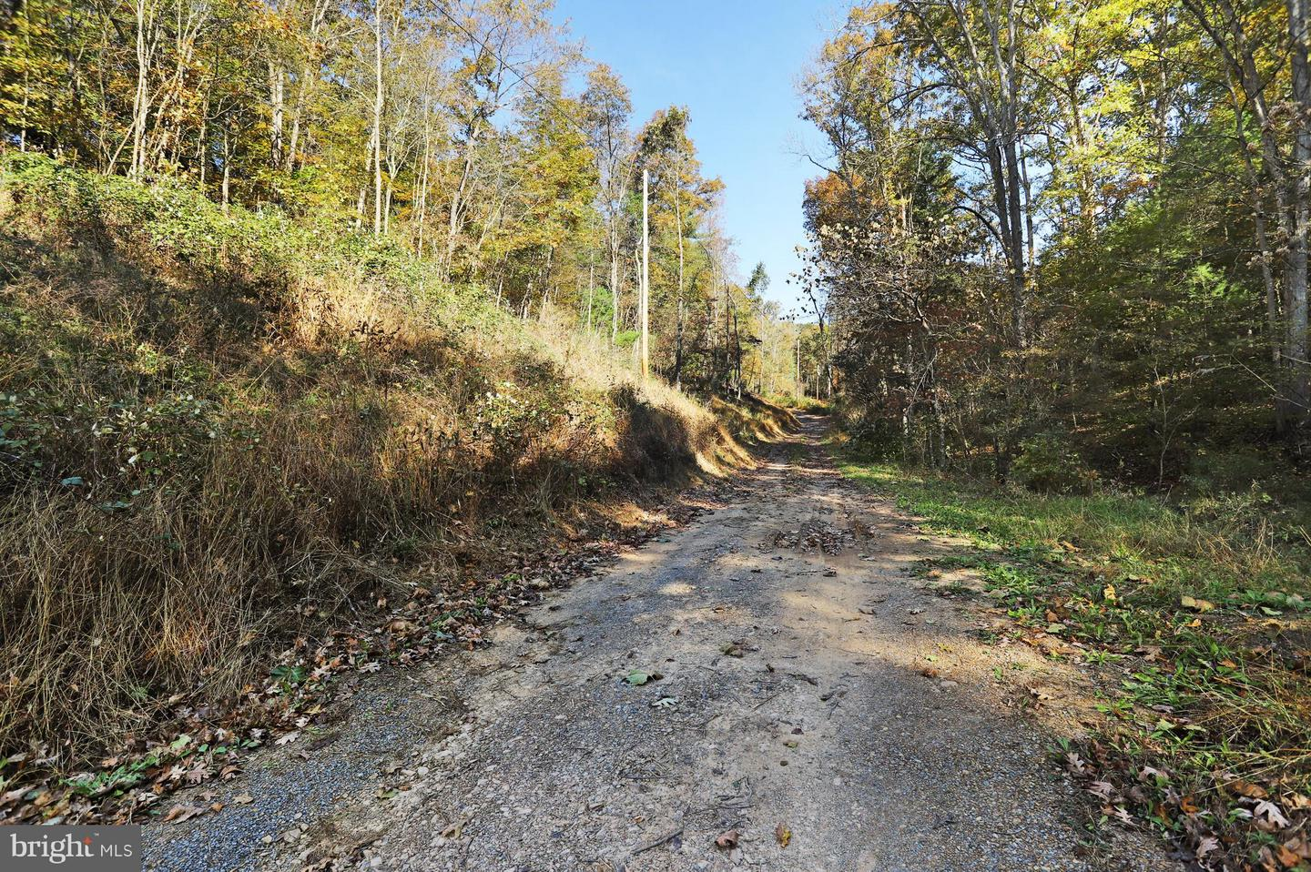 Land for Sale at 120 Jewel Ln Berkeley Springs, West Virginia 25411 United States