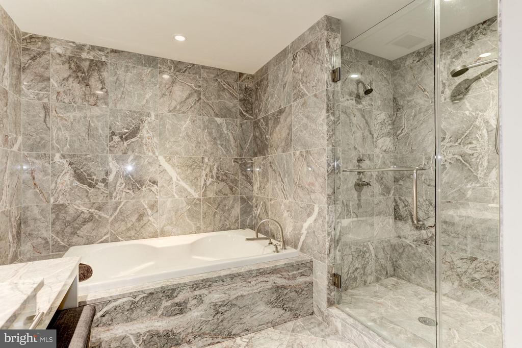 Separate Jacuzzi Tub and Dual Headed Shower - 1881 NASH ST N #1605, ARLINGTON