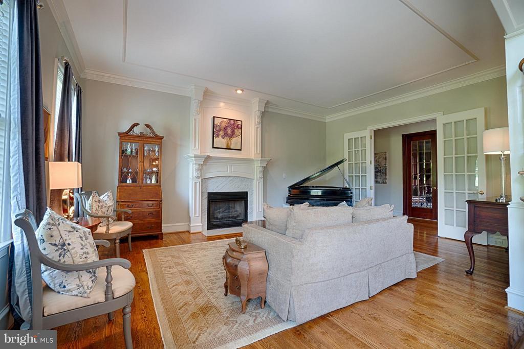 Living Room - 16730 WHIRLAWAY CT, LEESBURG