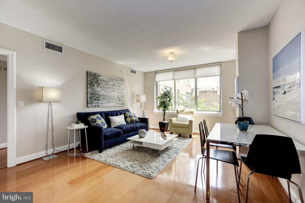 Southern view lets the sun in - 1020 HIGHLAND ST #410, ARLINGTON