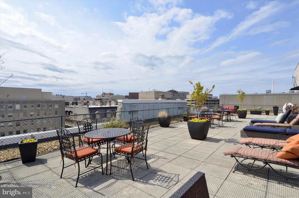Roof Deck - 1727 MASSACHUSETTS AVE NW #316, WASHINGTON