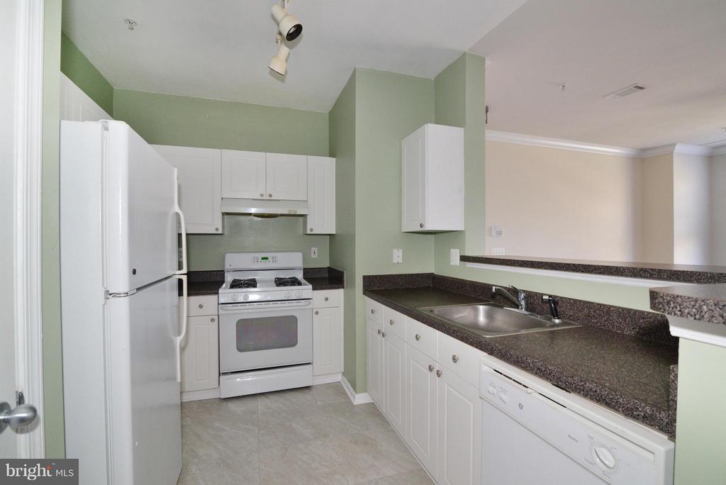 Kitchen - 11373 ARISTOTLE DR #9-305, FAIRFAX