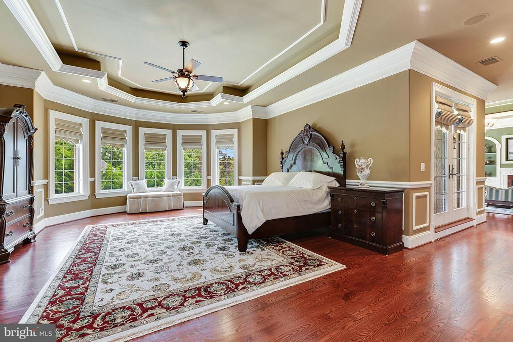 Oversized Master Bedroom w. Adjacent Morning Bar - 8334 ALVORD ST, MCLEAN