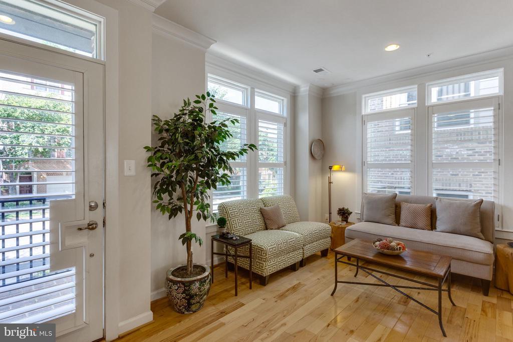 Living Room w Plantation Shutters/Transom windows - 1137 MONROE ST S, ARLINGTON