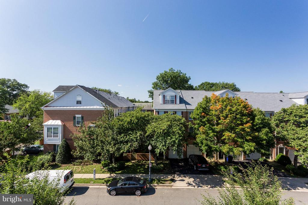 Fantastic Fall Foliage View from your Roof Terrace - 1137 MONROE ST S, ARLINGTON